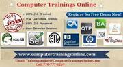Dot Net Online Training with Job  Assistance