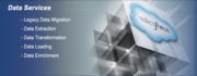Salesforce Web Application Development Database Service
